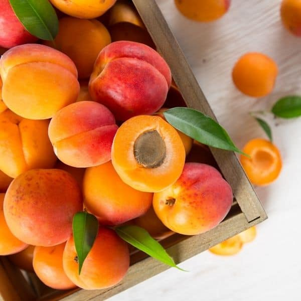 photo of apricots in wooden crate representing Blenheim Apricot White Balsamic