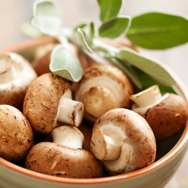 photo of mushrooms and sage in bowl representing wild mushroom and sage olive oil