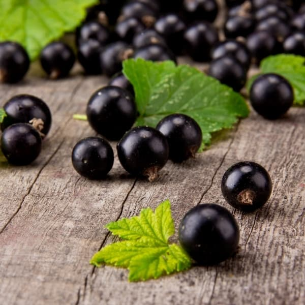 photo of black currants on wood table representing black currant balsamic vinegar