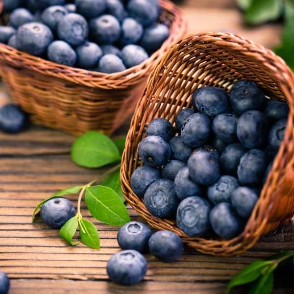 photo of blueberries in basket representing blueberry balsamic vinegar
