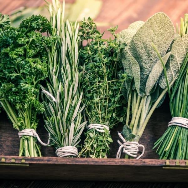 Image of fresh herb springs representing OV Harvest Neapolitan Herb Dark Balsamic Vinegar